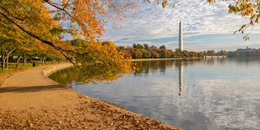 Mount Vernon, Baltimore, Maryland, United States of America