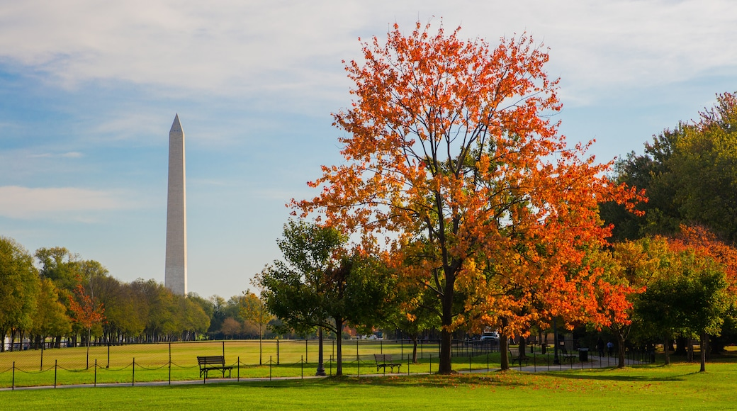 Washington Monument which includes a monument, a park and fall colors