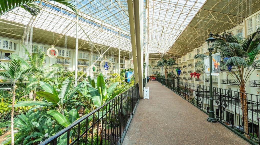 Opryland Hotel Gardens showing a garden and interior views