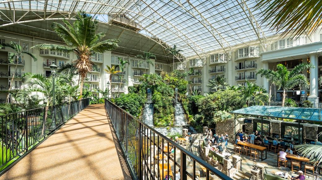 Opryland Hotel Gardens featuring a garden and interior views