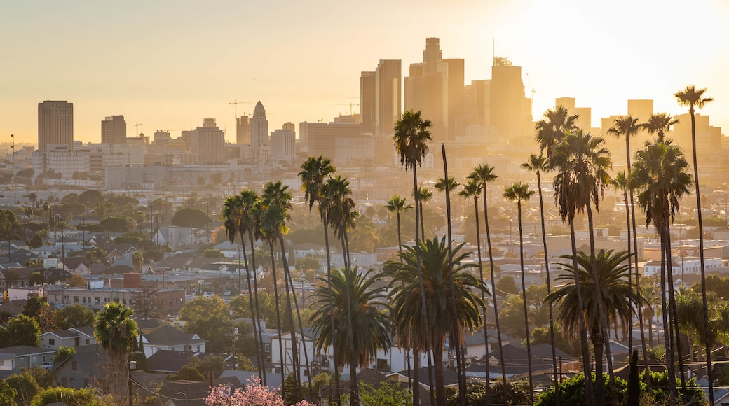 Los Angeles which includes a sunset, a city and landscape views