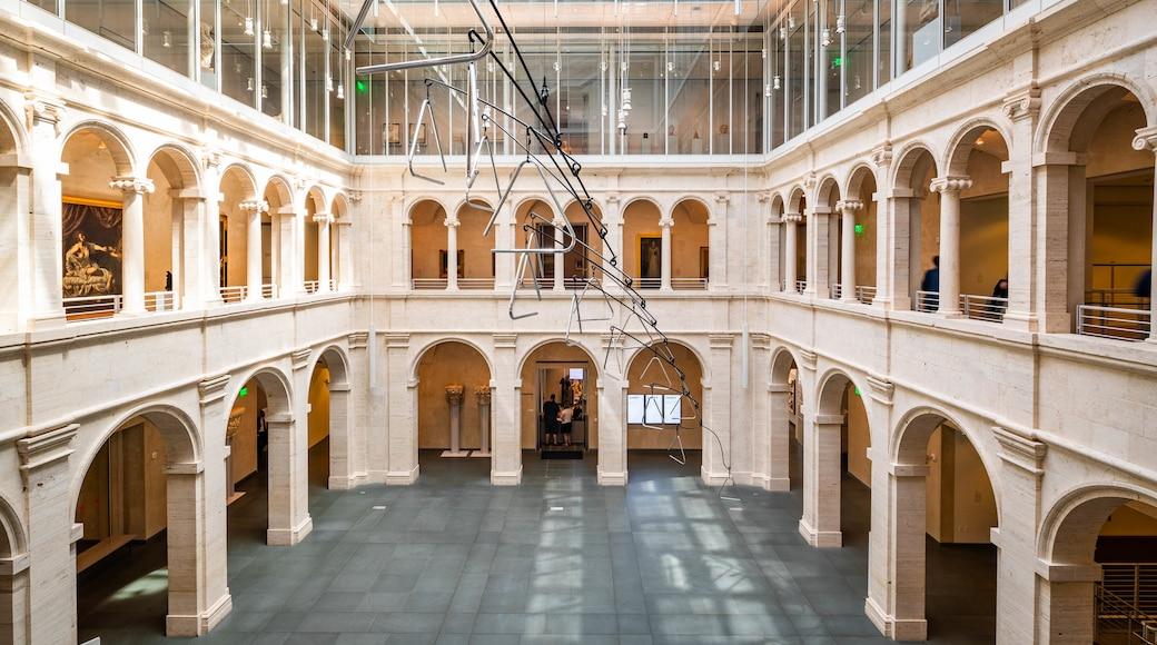 Harvard University Art Museums featuring interior views