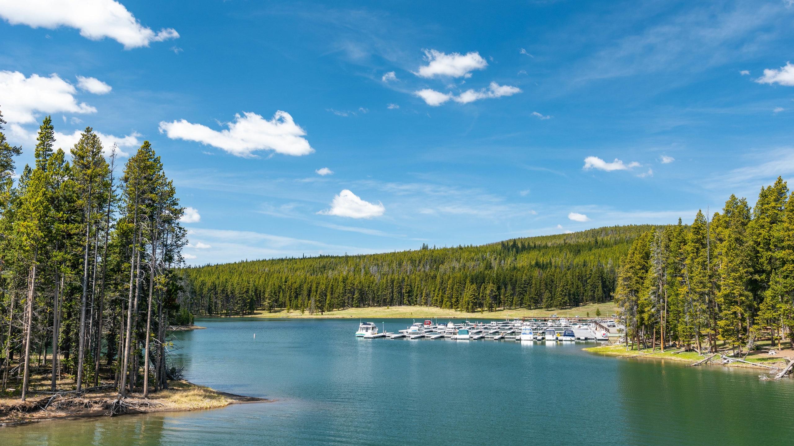 Staunen Sie über die vielfältige Pflanzenwelt von Yellowstone Lake, einer bezaubernden grünen Oase in Yellowstone Nationalpark. Machen Sie einen Spaziergang durch den Wald oder entdecken Sie die Gletscher in der Gegend.