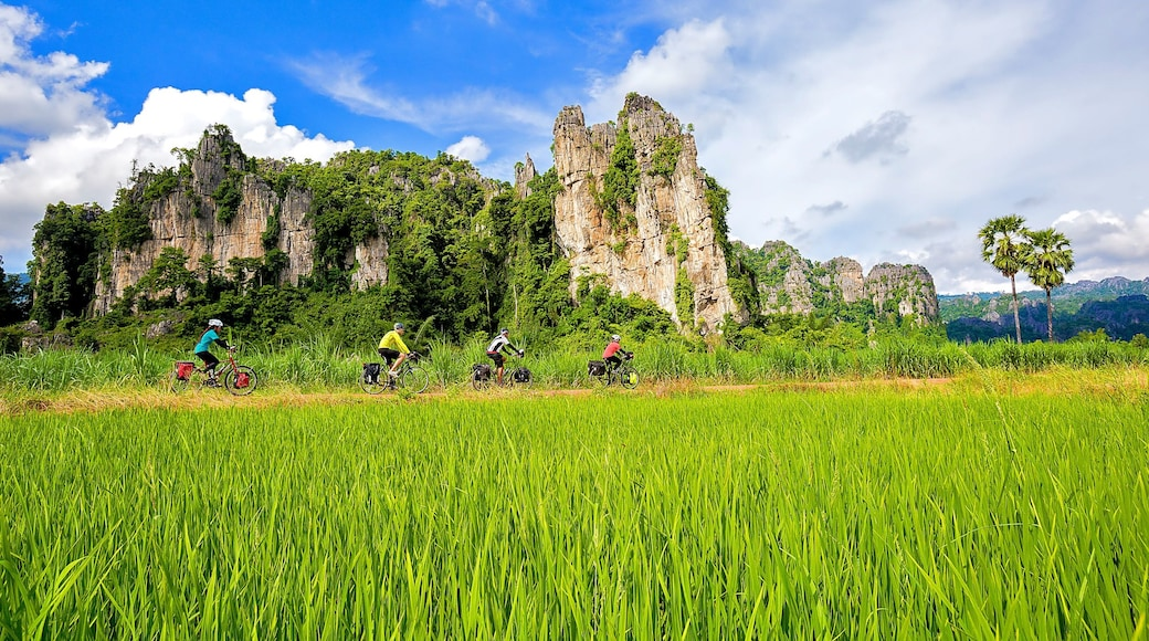 Sukhothai Historical Park showing mountains, cycling and a garden