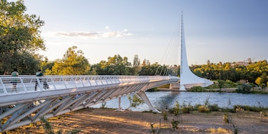 Sundial Bridge featuring a lake or waterhole, a sunset and a bridge