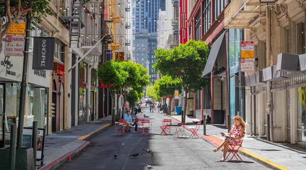 Downtown San Francisco which includes street scenes and a city as well as an individual femail