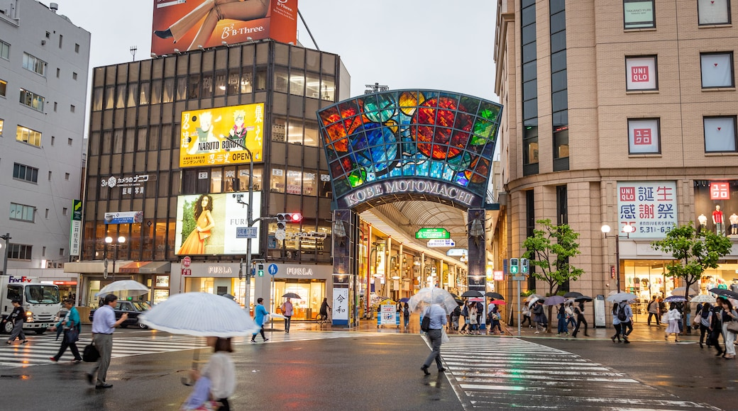 Motomachi Shopping Street showing street scenes and a city