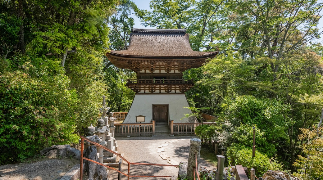 Ishiyamadera Temple which includes a garden and heritage elements