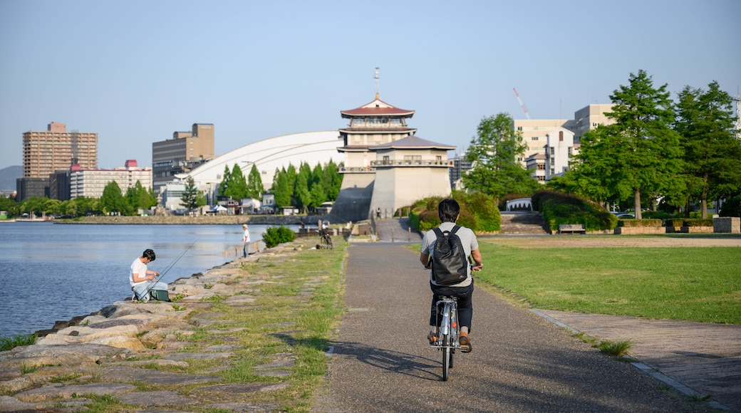 Lake Biwa featuring cycling and a garden as well as an individual male