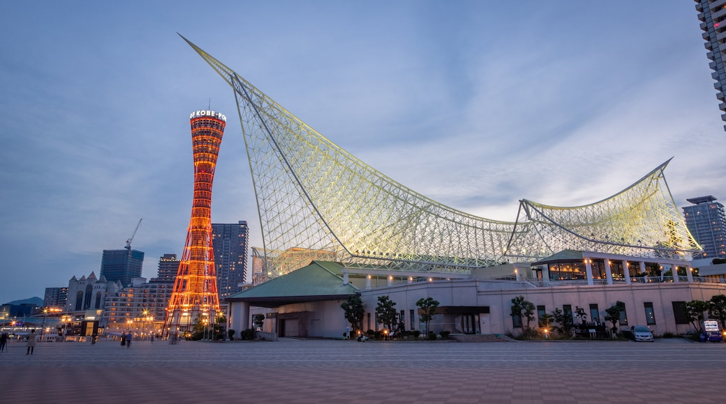 Kobe Tower featuring a sunset, a square or plaza and modern architecture