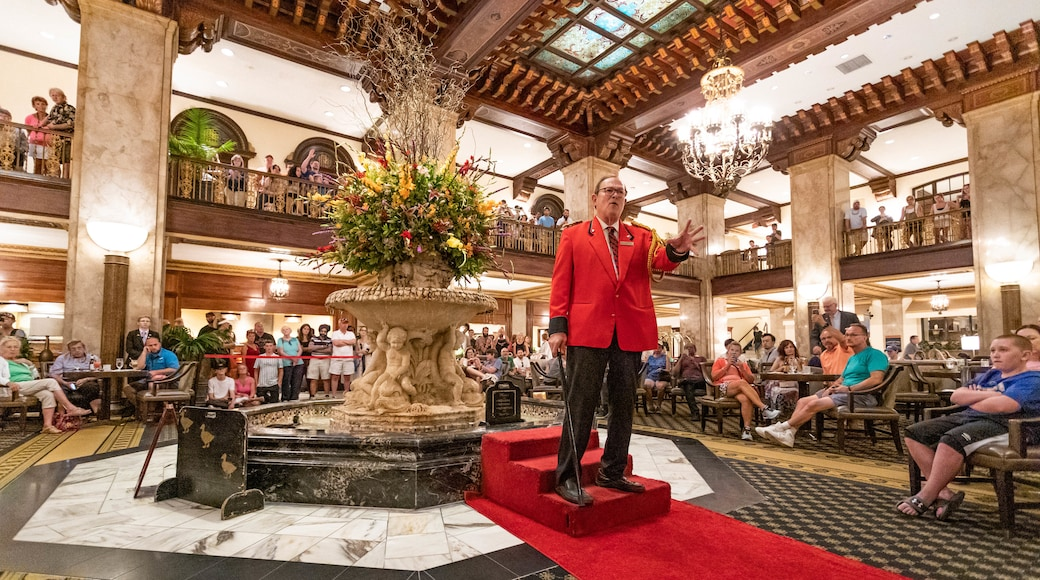 Peabody Ducks showing performance art as well as a large group of people