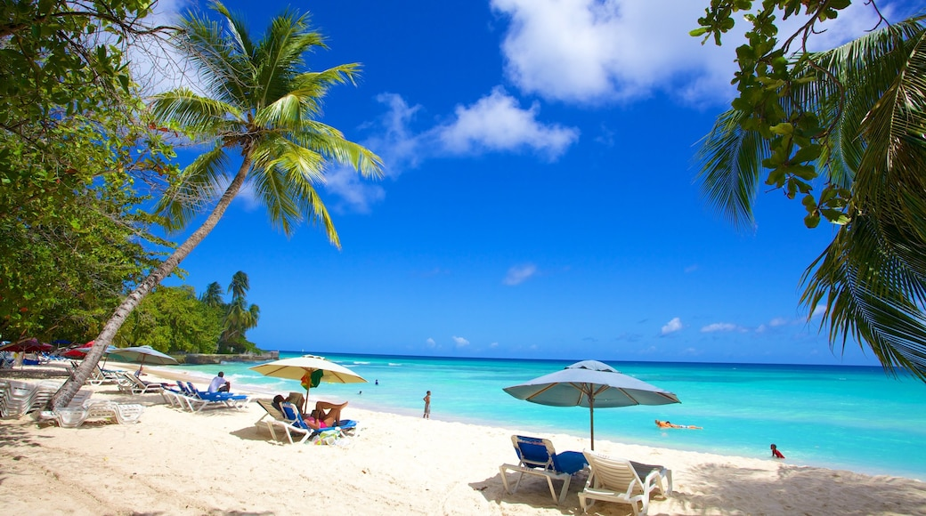 Dover Beach showing swimming, landscape views and tropical scenes