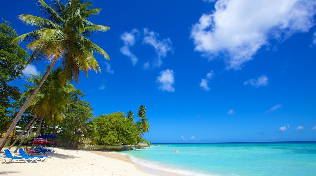 Dover Beach which includes a beach, landscape views and tropical scenes