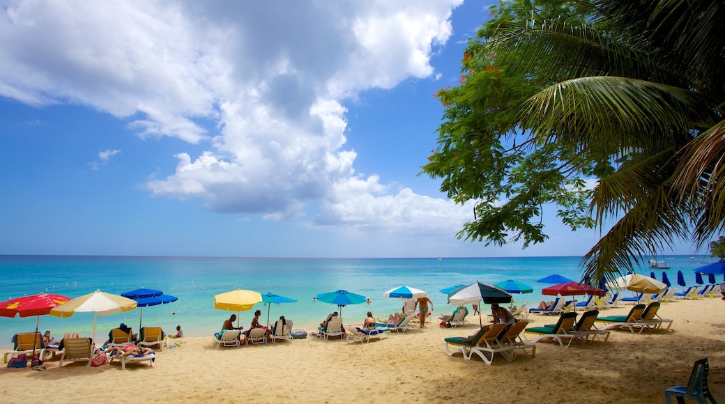 Mullins Beach featuring a sandy beach, tropical scenes and a luxury hotel or resort
