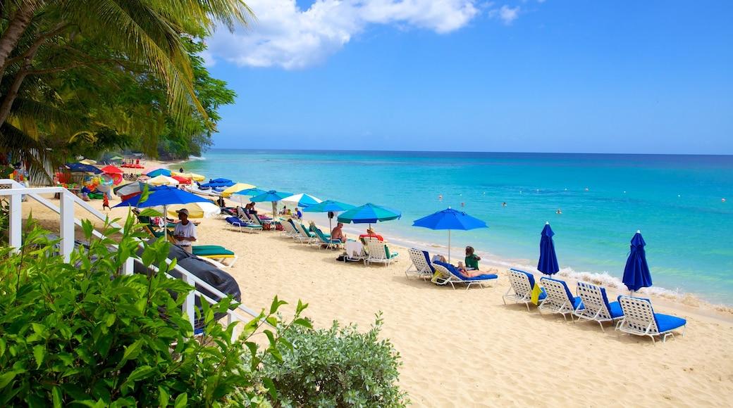 Mullins Beach featuring tropical scenes and a beach