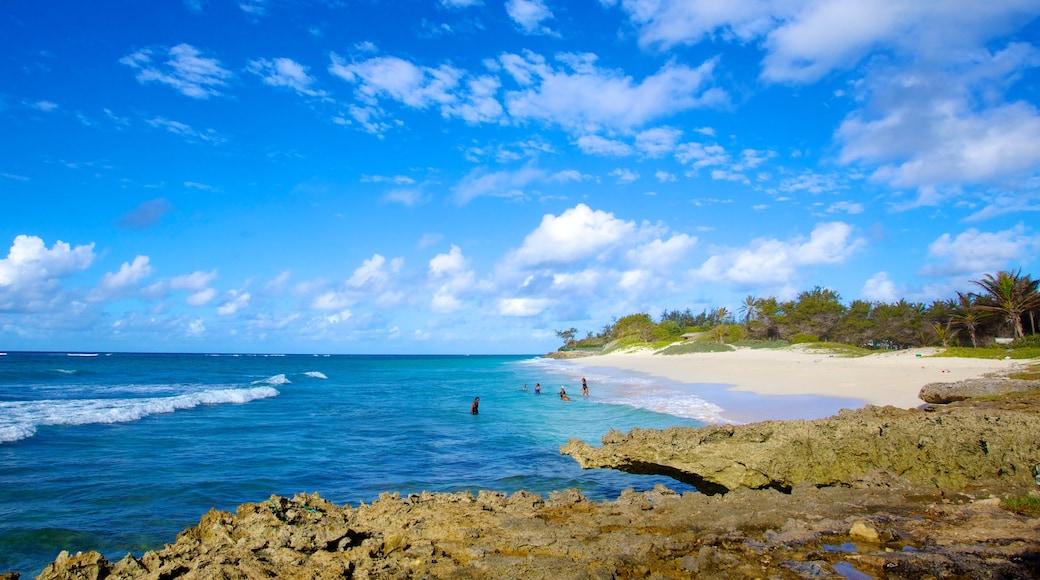 Silver Sands Beach welches beinhaltet tropische Szenerien, Strand und Landschaften