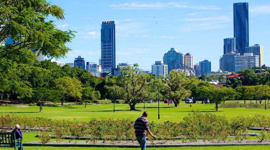 New Farm Park featuring a city, landscape views and a park