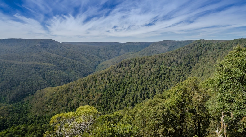 Barrington Tops National Park which includes landscape views, mountains and forest scenes