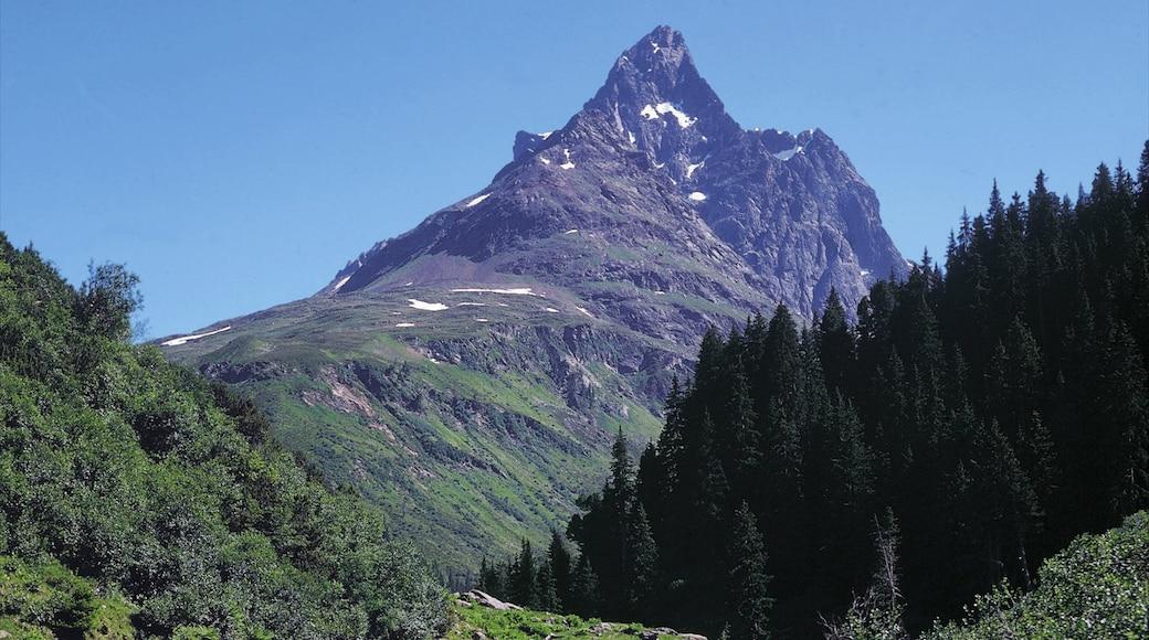 Lech am Arlberg das einen Berge, Wälder und Landschaften