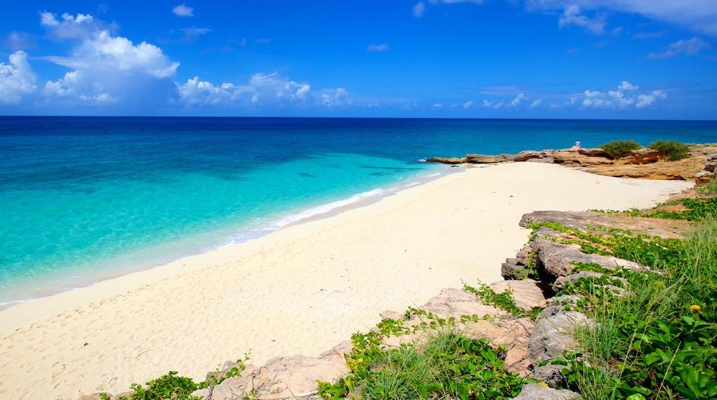 Cupecoy caracterizando paisagem, uma praia e cenas tropicais