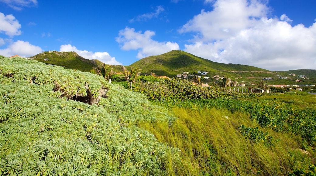 Guana Bay Beach welches beinhaltet Landschaften und ruhige Szenerie