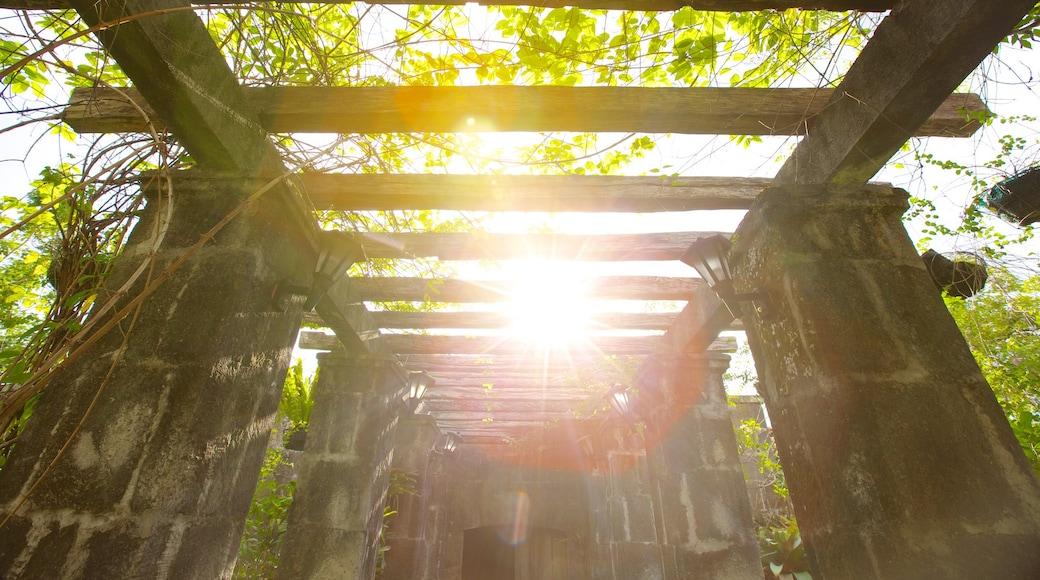 Baluarte de San Diego showing a garden and heritage elements