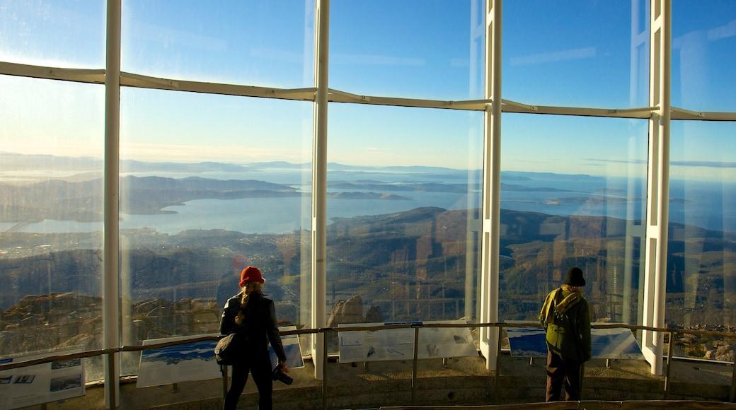Mt. Wellington showing views, general coastal views and interior views