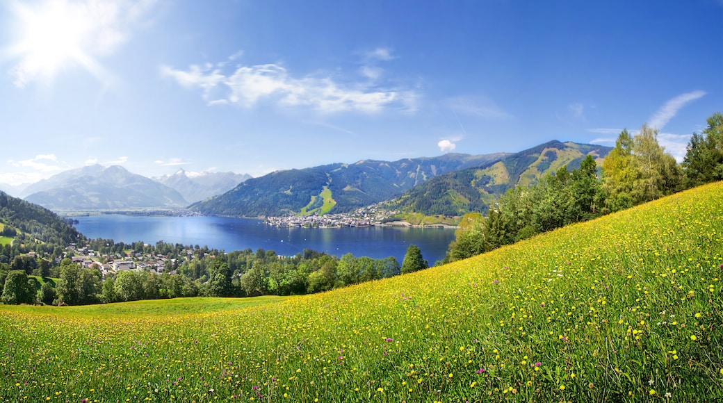 Zell am See which includes tranquil scenes, a lake or waterhole and landscape views