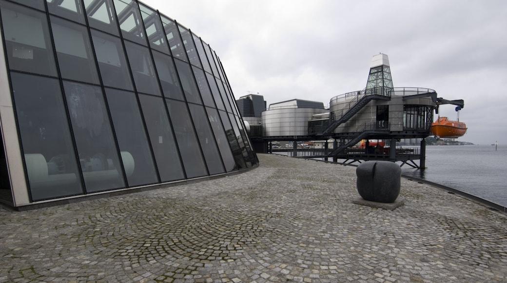 Museo del petrolio norvegese mostrando architettura moderna