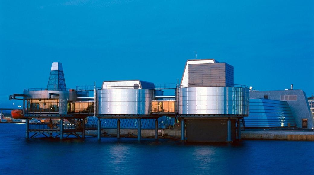 Museo del petrolio norvegese mostrando località costiera, città e architettura moderna