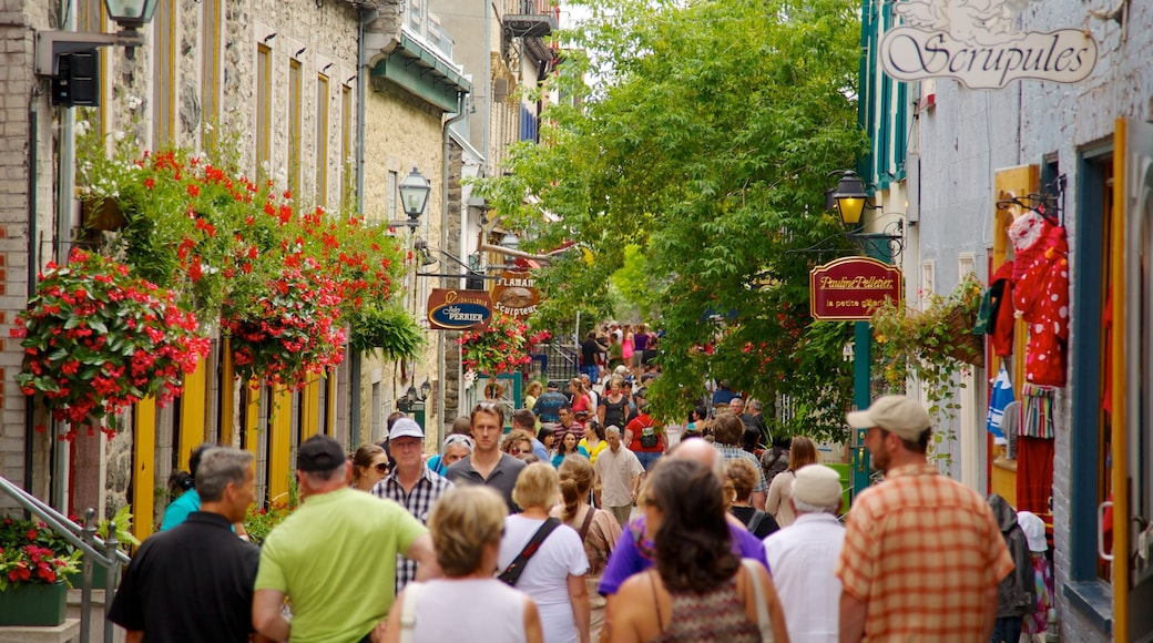 Quartier Petit Champlain showing street scenes, a city and shopping