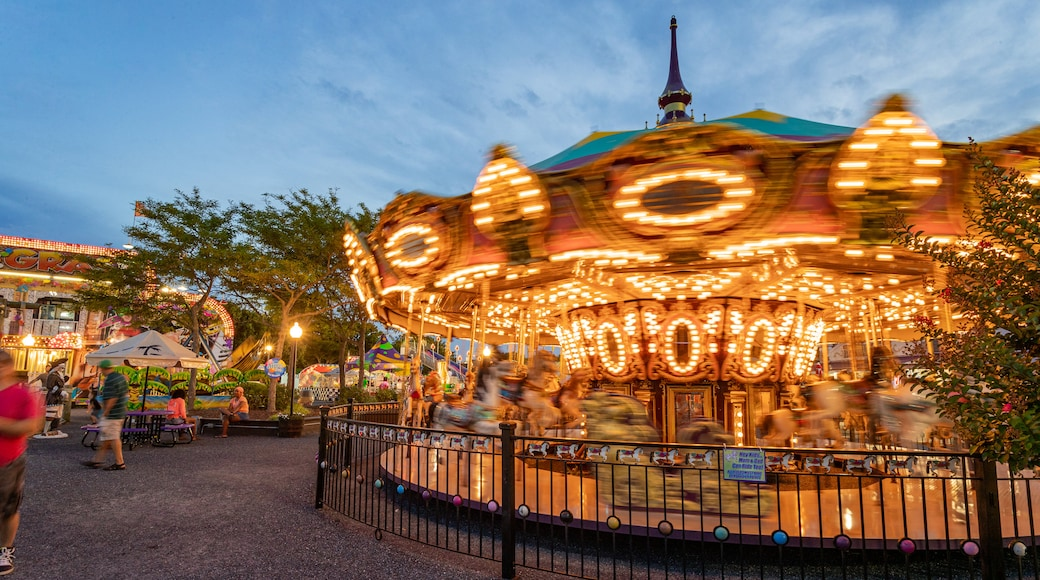 Jolly Roger Amusement Park showing night scenes and rides
