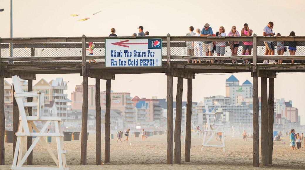 Ocean City Beach showing a beach, signage and general coastal views