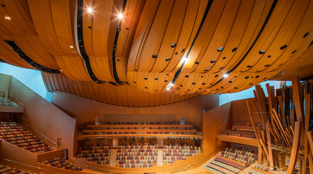 Walt Disney Concert Hall featuring theater scenes and interior views