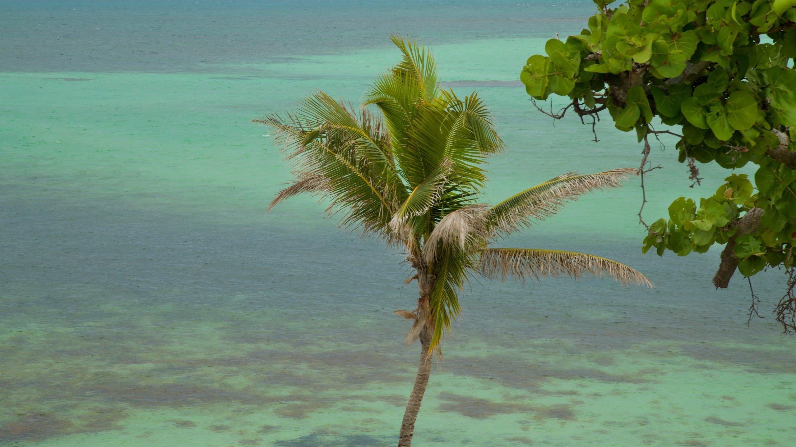 Bahia Honda State Park and Beach, Big Pine Key, Florida, United States of America