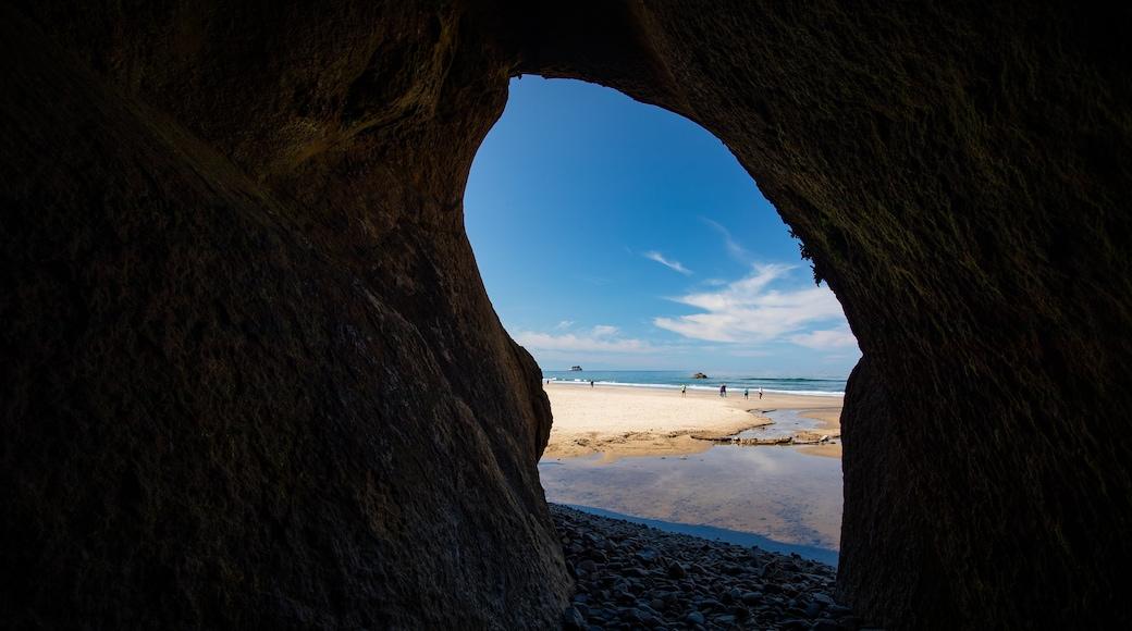 Cannon Beach featuring a beach and general coastal views