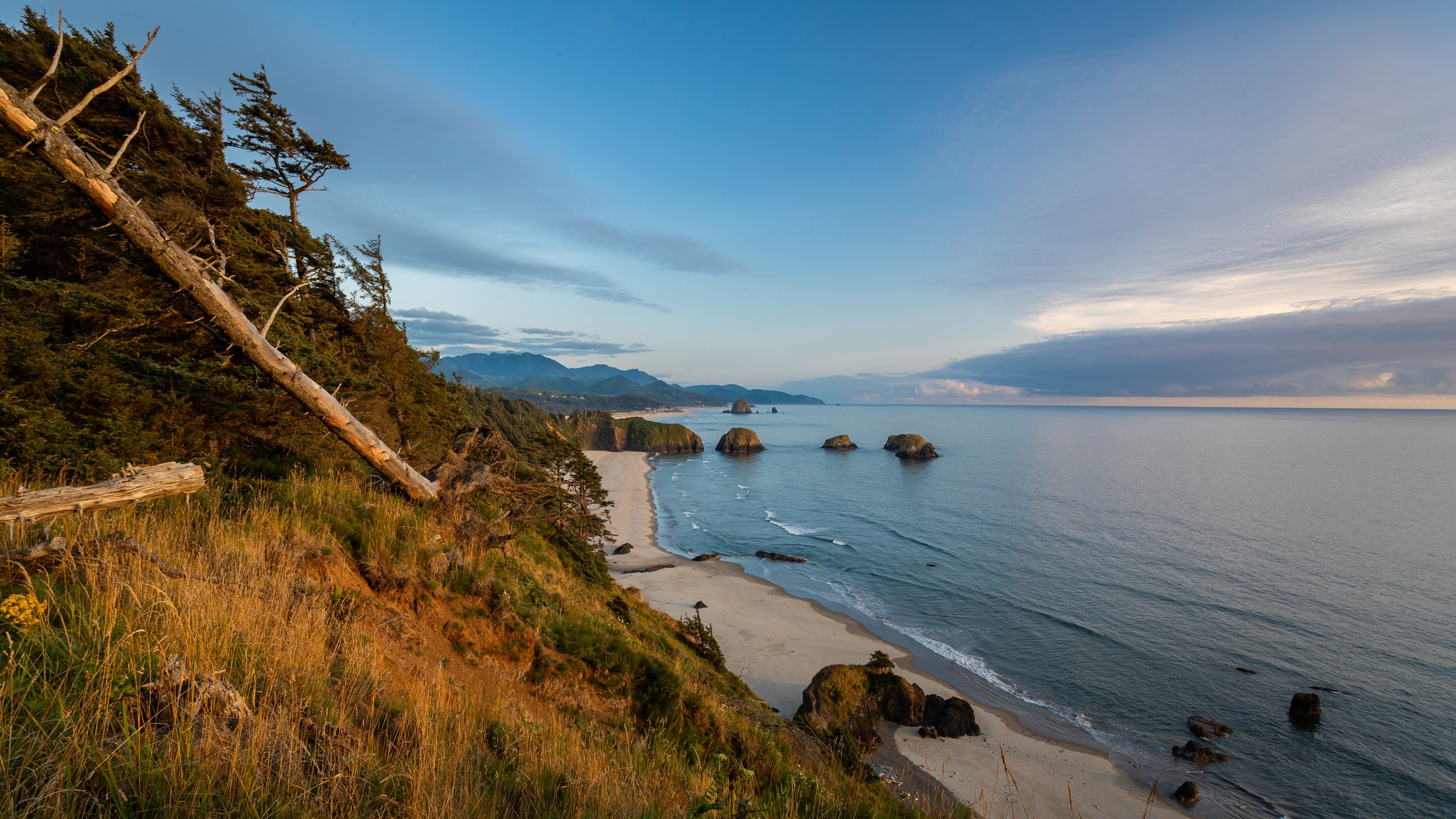 Explore the great outdoors with a trip to Ecola State Park, a popular green space in Oregon Coast. Stroll along the beaches or discover the area's sunsets.