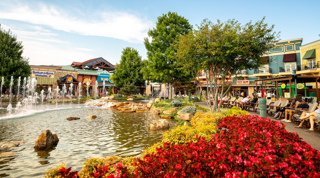 Island at Pigeon Forge showing a pond and a fountain
