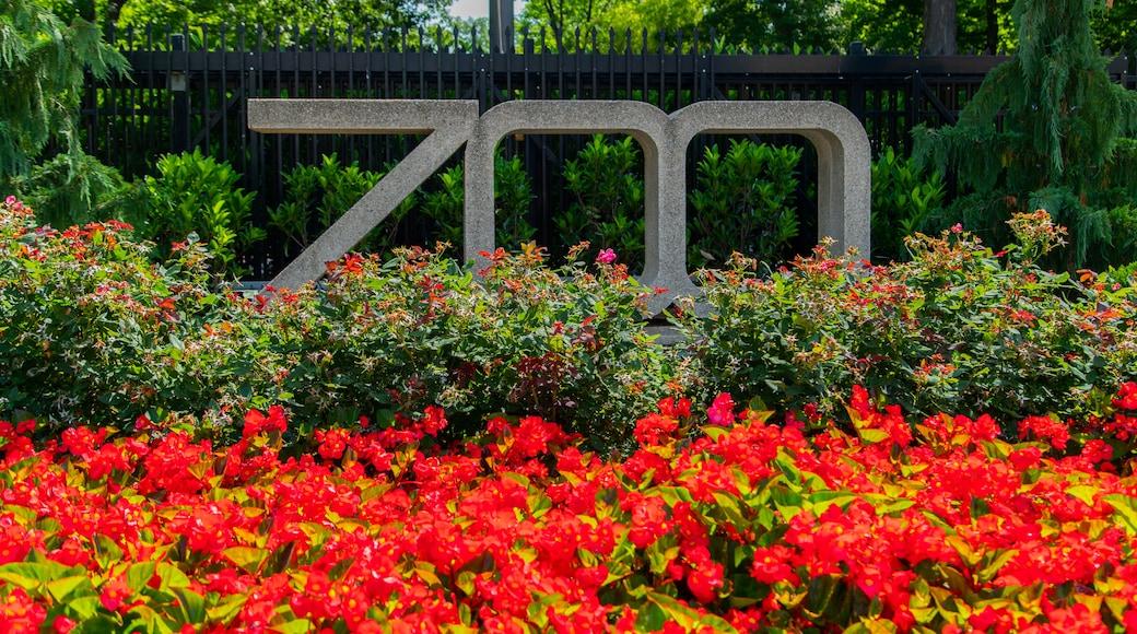 Zoológico Nacional del Smithsoniano