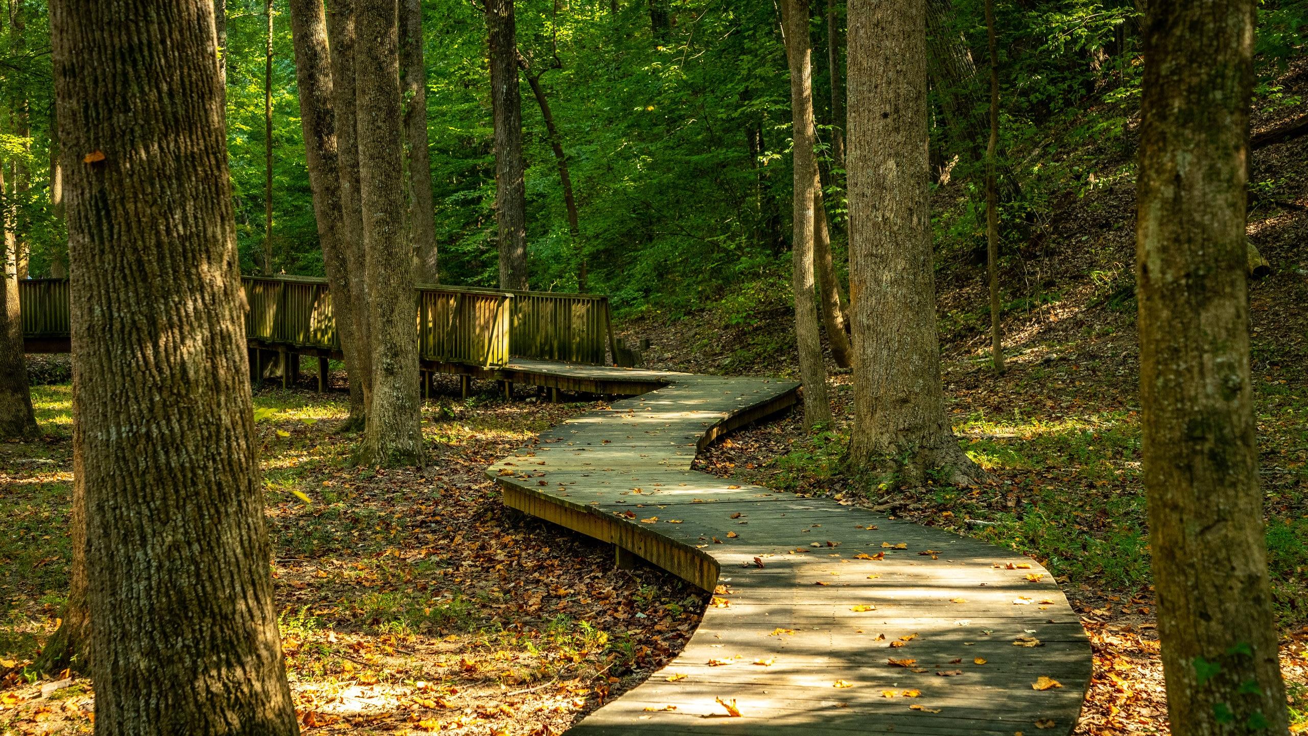 Wilshire Trails Park, Gainesville, Georgia, USA