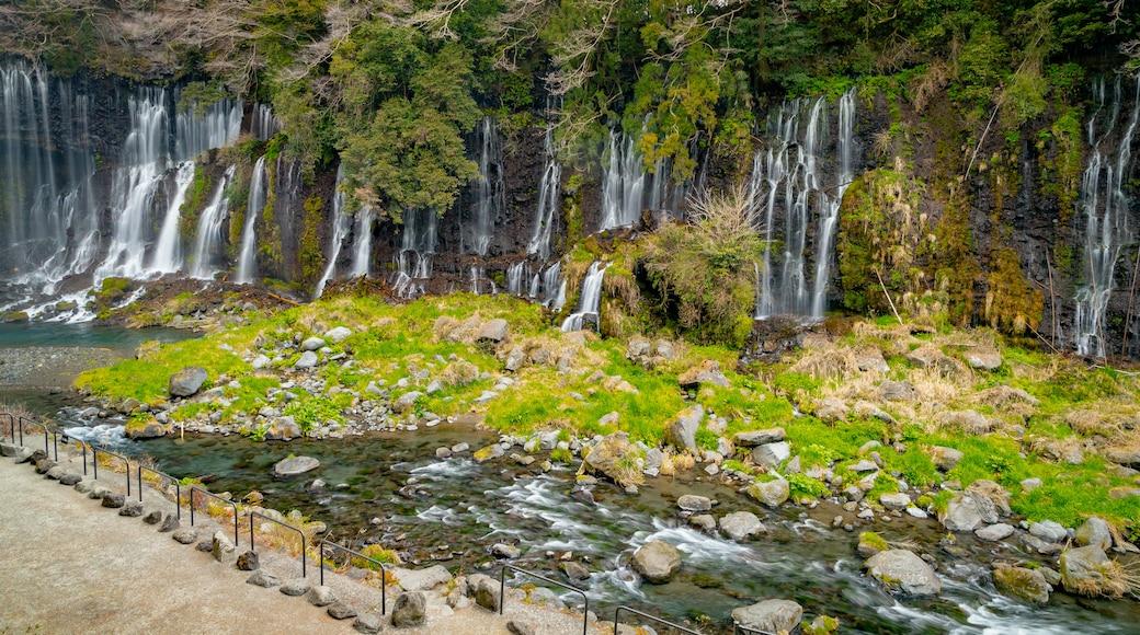 Fujinomiya featuring a river or creek and a cascade