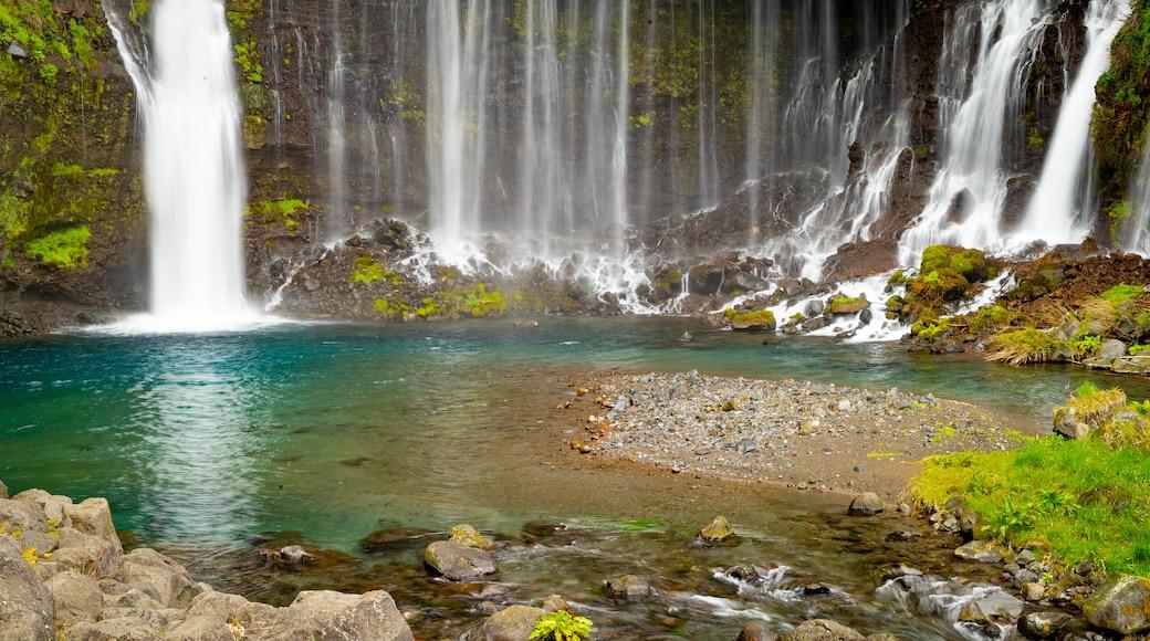Fujinomiya which includes a waterfall