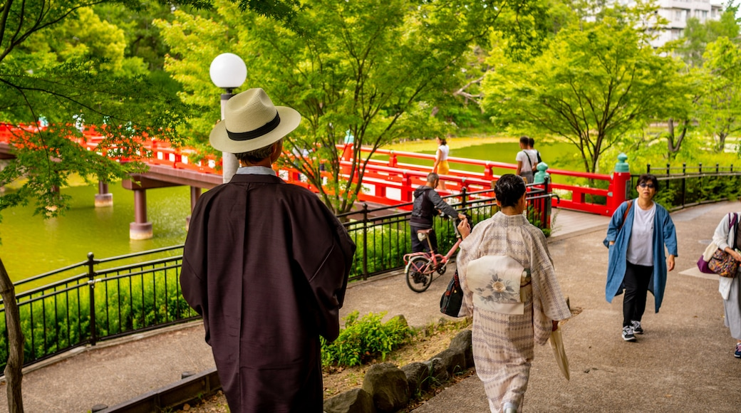 Tennoji featuring a bridge and street scenes as well as an individual male