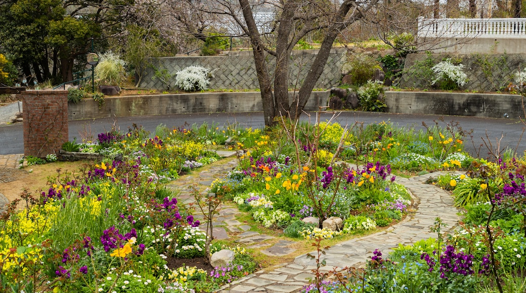 Akao Herb and Rose Garden featuring a garden and wildflowers