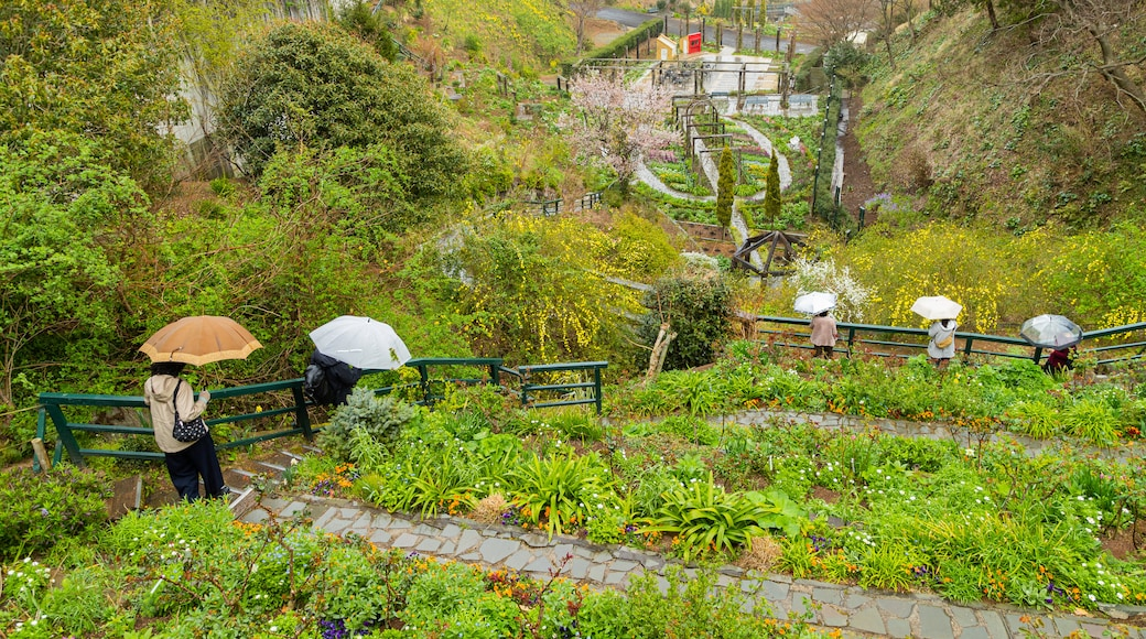 Akao Herb and Rose Garden which includes a garden as well as a couple