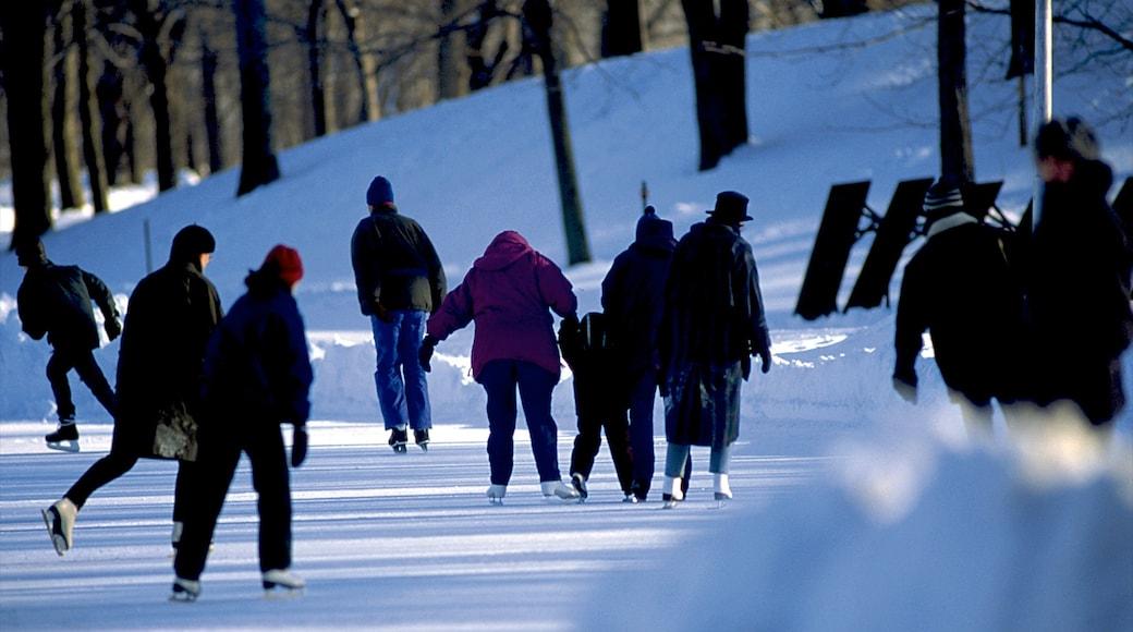 Parc Jean-Drapeau welches beinhaltet Eislaufen, Park und Schnee