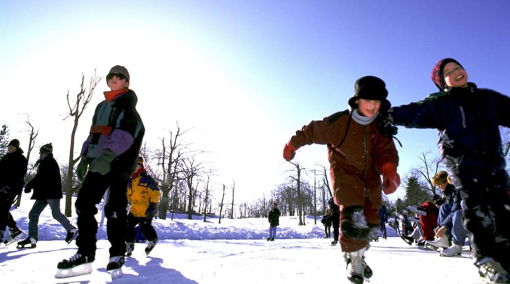 Parc Jean-Drapeau mit einem Schnee, Garten und Eislaufen