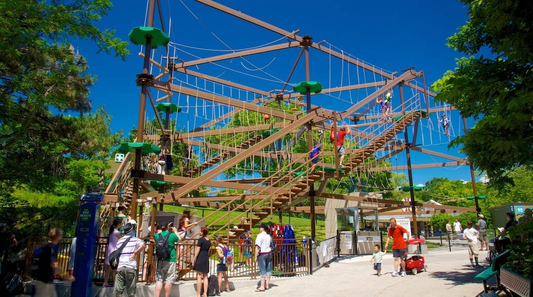 Toronto Zoo showing a playground and rides as well as a large group of people