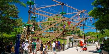 多倫多動物園 其中包括 遊樂設施 和 遊樂場 以及 一大群人