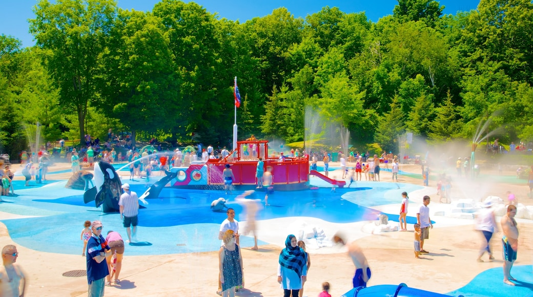 Toronto Zoo showing a playground, zoo animals and a water park